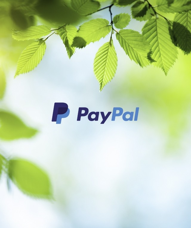 paypal logo with leaves background